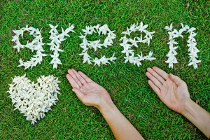 Delta Dental of Arizona is taking its love for all things green a step further: We're taking steps to reduce waste and lower costs by increasing our paperless offerings. Find out how you can help!