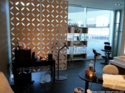 SPA Centurion lounge dfw delta points review (2)