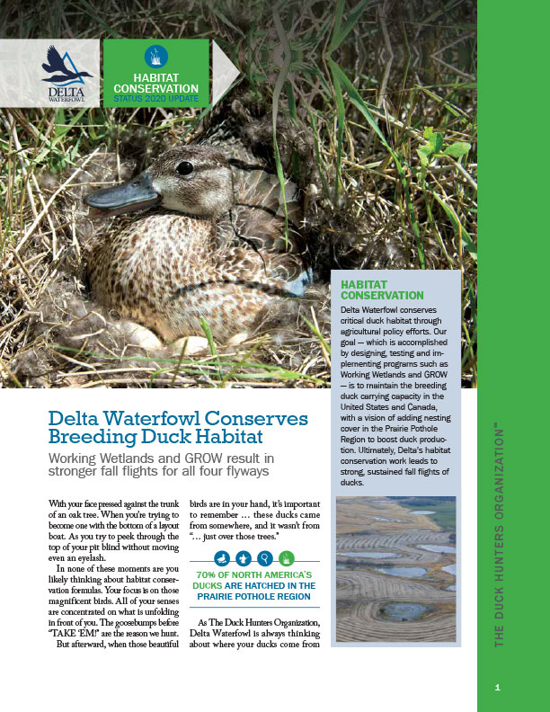 Delta Waterfowl 2020 Habitat Report