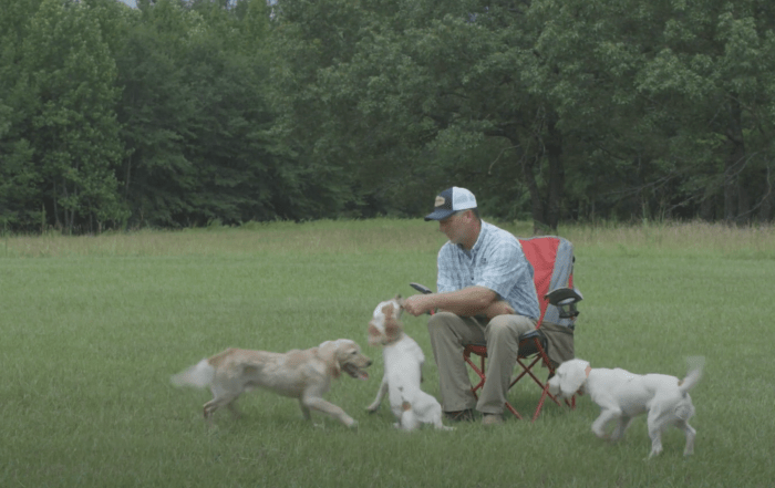 duck dog training tip puppy treats