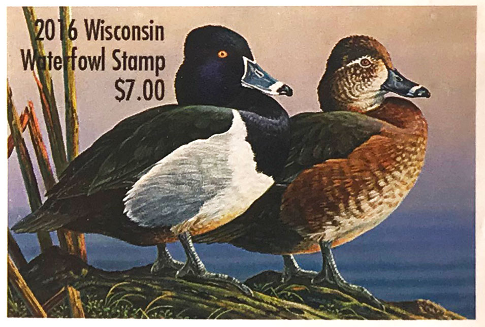 WI state duck stamp