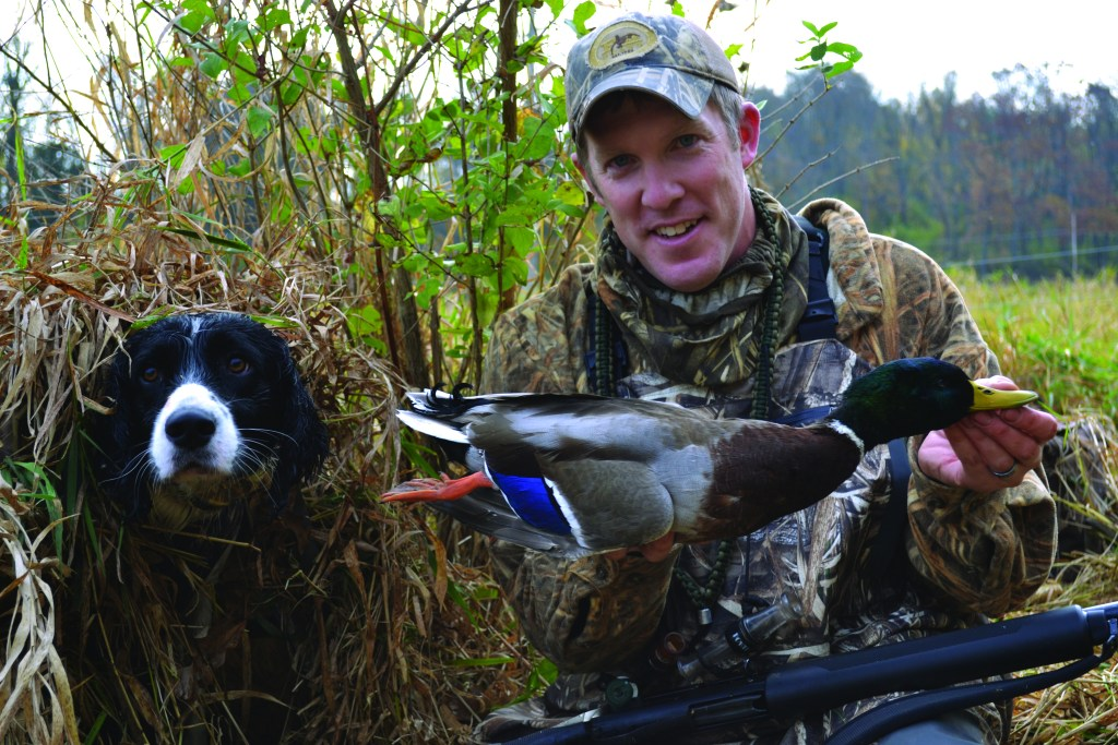 kyle and cash the beautiful duck dog and a mallard duck