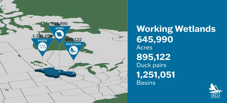 delta waterfowl working wetlands program conservation impact US