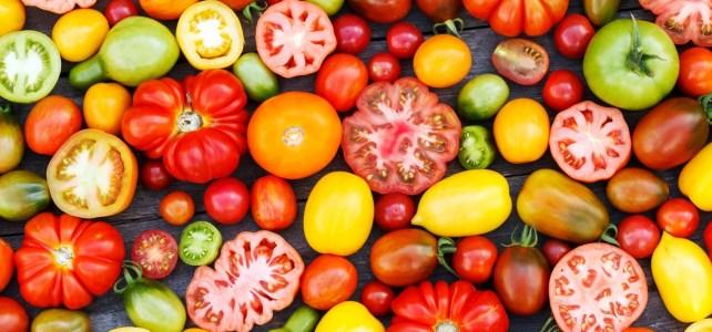 Le Projet Graines de Tomates