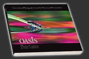 Oasis Photo Contest 2013