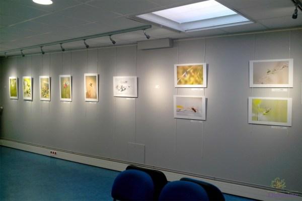 """Exposition """"Espace Info Tourisme"""" 2014"""