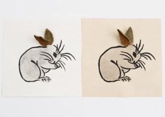 kdL_rabbitRabbit01