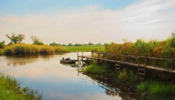 Visit Botswana River