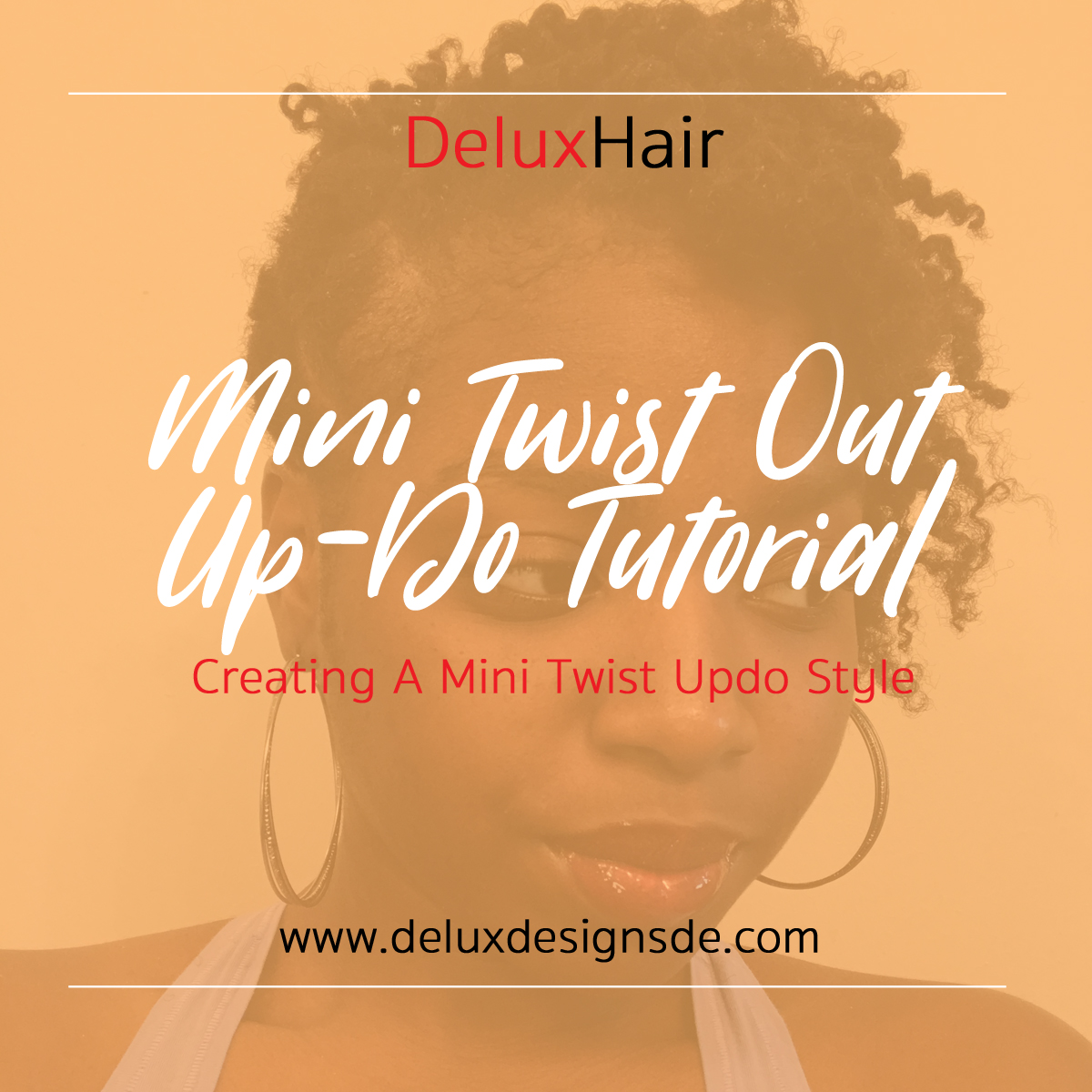 DeluxHair - Mini Twist Out Up-Do Style