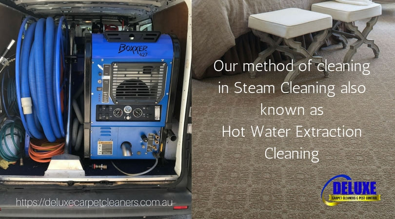 Carpet Steam Cleaning Hot Water Extraction What Are Its Benefits