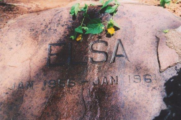 Elsa the Lioness Grave