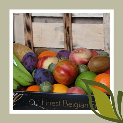 Fruitkorf basis