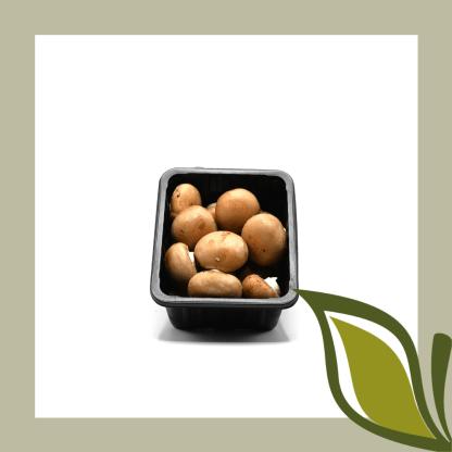 champignon bruin bakje