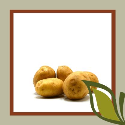 frietaardappelen