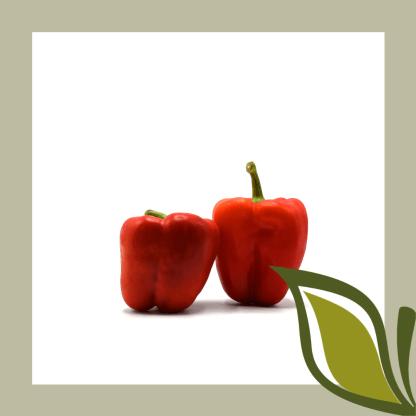 Rode paprika