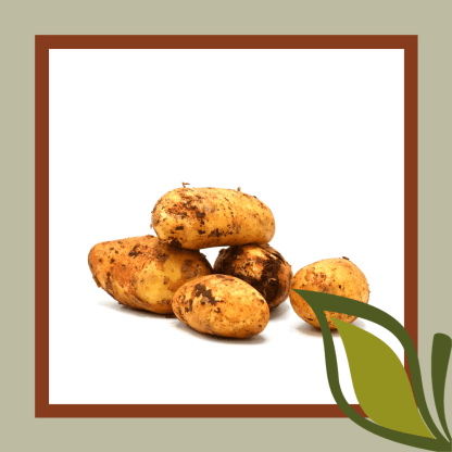 aardappel Cyprus