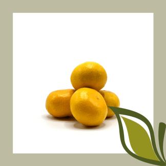 Spaanse mandarijn