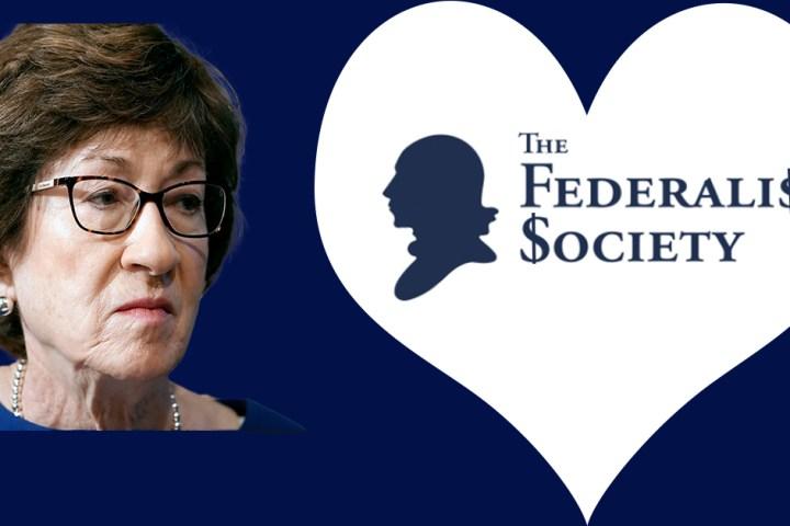Susan Collins - Federalist Society