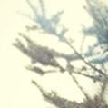 ADVENTSKALENDER-DEMECO-7.Dezember