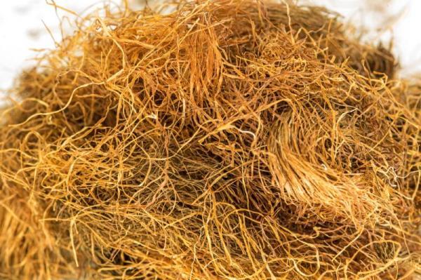 230-plantas-medicinales-mas-efectivas-y-sus-usos-maiz-estigmas