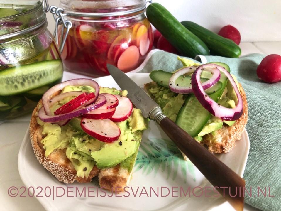 snelle pickle van radijs en komkommer