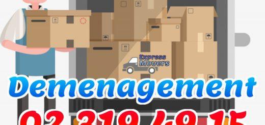 Carton Demenagement Action Express Movers Le Blog