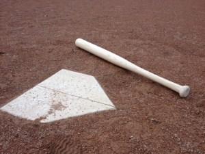 Baseball bat - outdoors 1