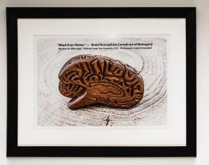 mind-over-matter-framed-poster-of-curved-brain-at-aan