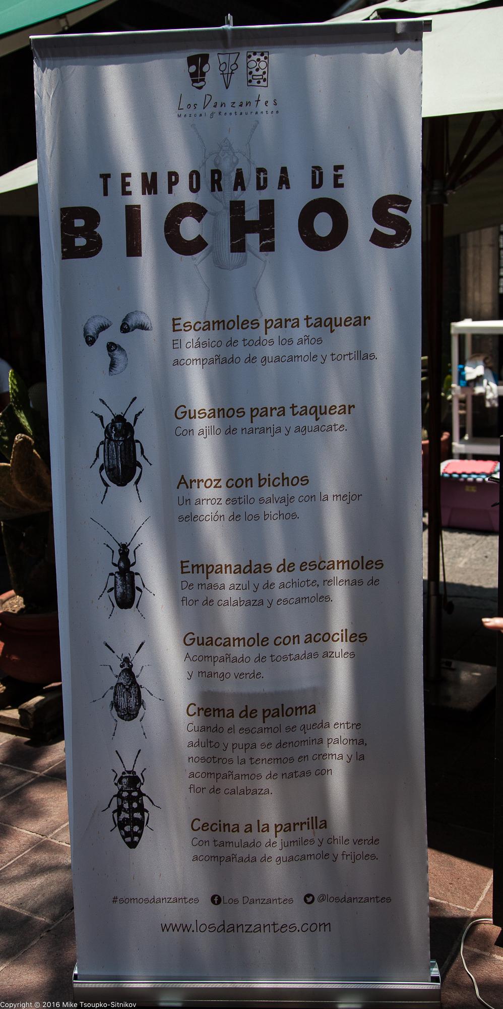 A restaurant menu in Coyoacán