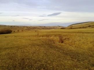 Valea Vezii