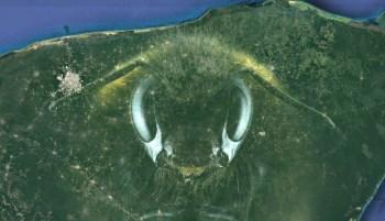 Yucatán es tierra apícola