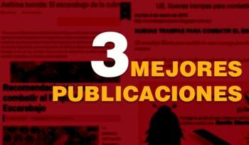 LAS 3 MEJORES PUBLICACIONES