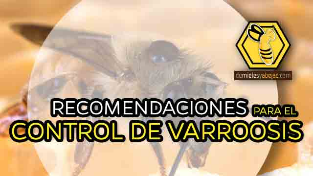 RECOMENDACIONES PARA EL CONTROL DE VARROASIS