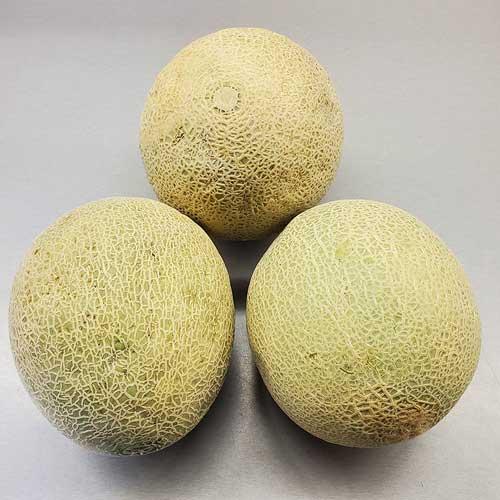 Cantaloupe Demille S Farm Market Sweet Corn Amp Produce