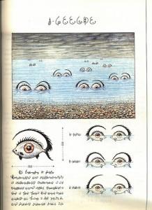 fauna: der augenfisch.