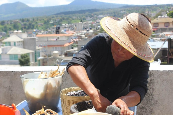 collective women of the land sea castle mexican corn snacks tlalpan cdmx