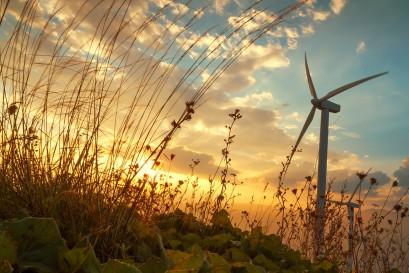 wind-2