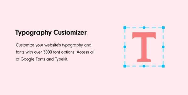 Typography Customizer