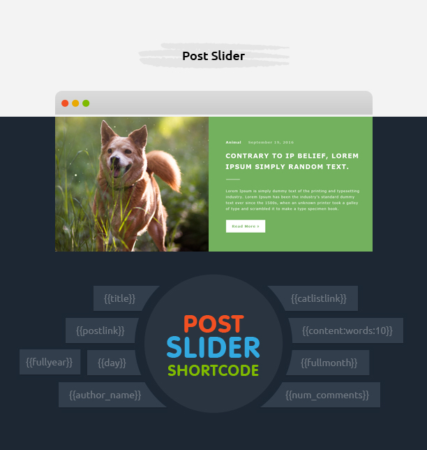 Avartan Slider - Responsive WordPress Slider Plugin 6