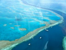"""Amazing Great Barrier Reef"" by Sarah_Ackerman - Wikipedia"