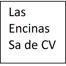 LAS ENCINAS, S.A. DE C.V. (1995)