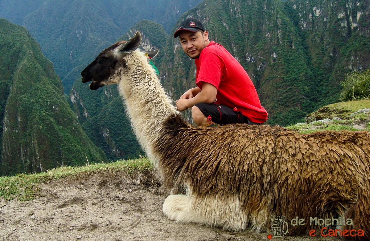 Machu Picchu - Peru-20