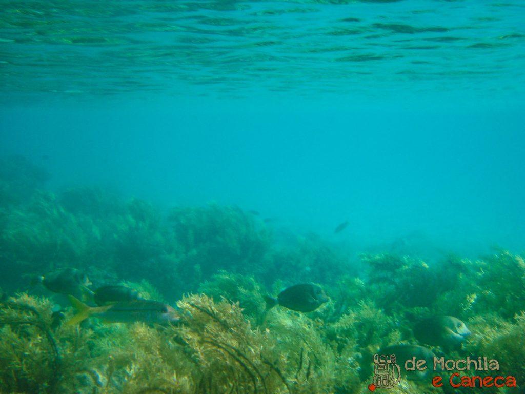 anakena ilha de pascoa-8