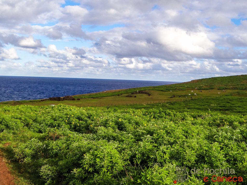 Vulcão Rano Kau Rapa Nui-38