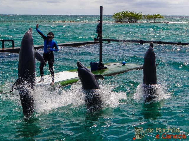 Oceanario Islas del Rosário