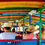Como é fazer o passeio de Chiva em Cartagena de Indias.