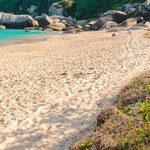 Conheça a trilha que vai da Praia do Canto Grande até a Praia da Tainha, em Bombinhas.