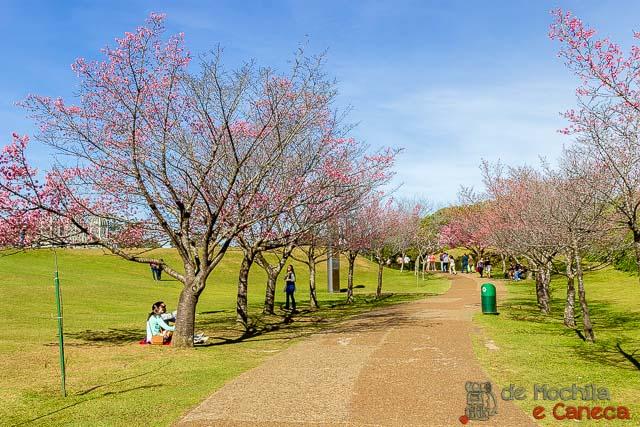 Jardim Botânico de Curitiba-25