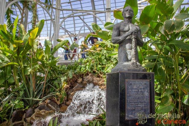 Jardim Botânico de Curitiba-Interior da Estufa