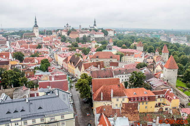 Centro Histórico de Tallinn-37